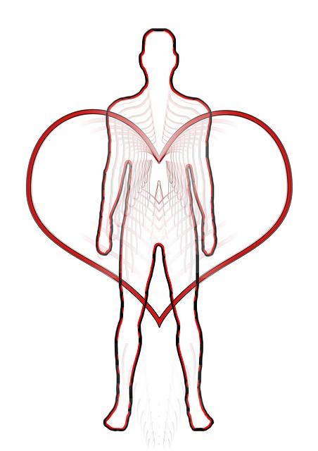 serce człowiek