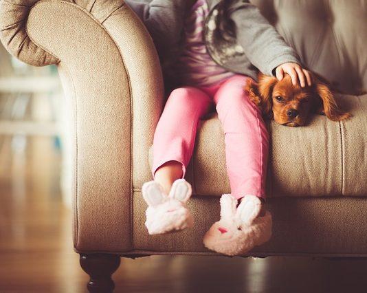 Dyskopatia u psa - jak przebiega leczenie?